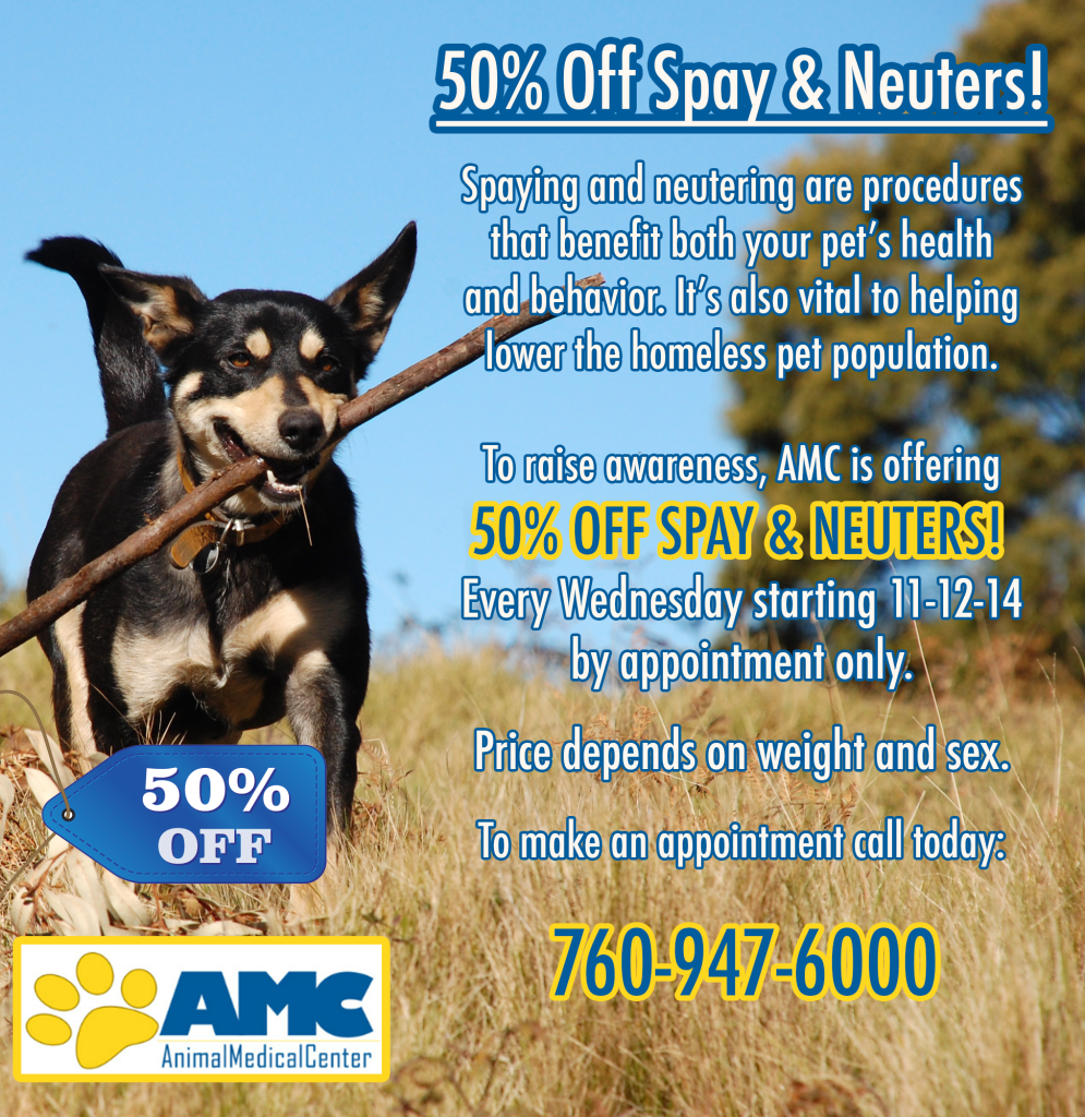 50% Off Spay and Neuter
